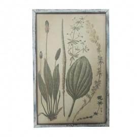 Billede med planter