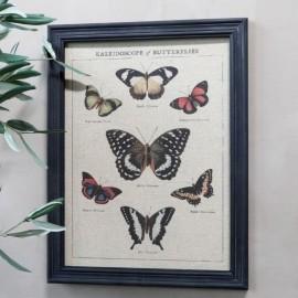 Billede med sommerfugle og sort ramme