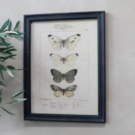 Billede m. sommerfuglemotiv & sort ramme