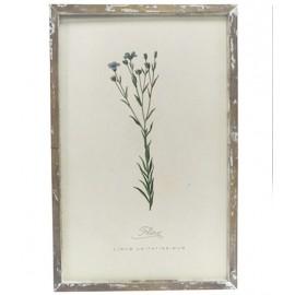 Billede med blomsterprint fra Chic Antique - nr. 2