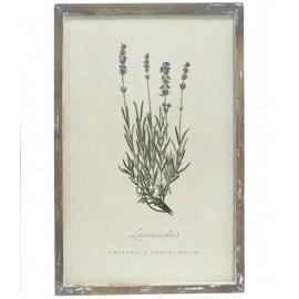 Billede med blomsterprint fra Chic Antique - nr. 3