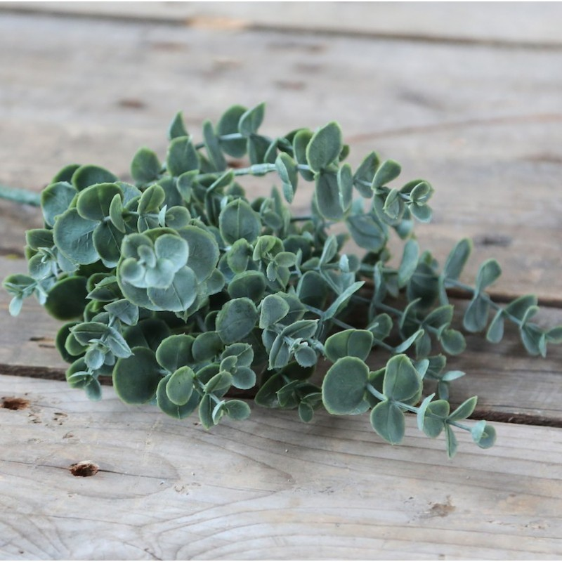 Kunstig eucalyptus plante - H37 cm